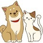 小さい犬と猫