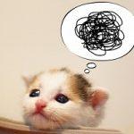 『悩みが多い人』の特徴と改善方法