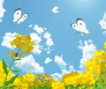 花に集まる蝶々