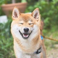 【いい笑顔のつくり方】いい笑顔をつくれる人は強運