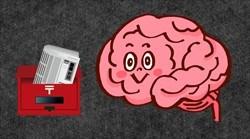 情報を得る脳