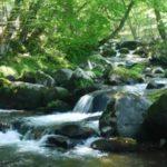 上善は水のごとし|『水のような生き方』で順調な人生に!