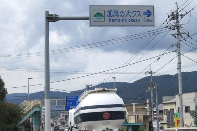「加茂の大クス」標識