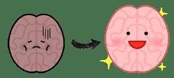 脳の可塑性