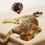 「一日の疲れ」をグッと減らす簡単な方法