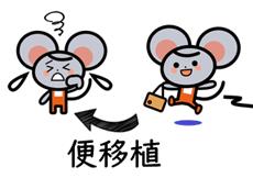 マウス実験①