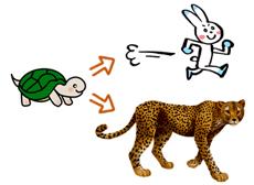 ウサギとチーター
