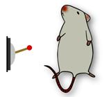 元気なマウス