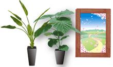 観葉植物とポスター