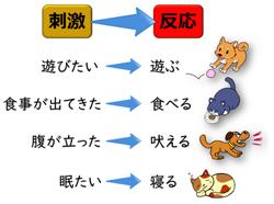 動物の反応