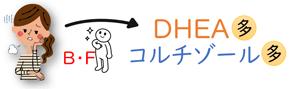 DHEAが増える
