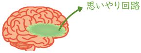 脳の思いやり回路