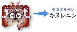 腸内環境とキヌレニン