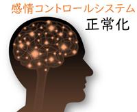 感情コントロールシステムの正常化