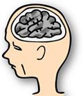 脳機能が低下